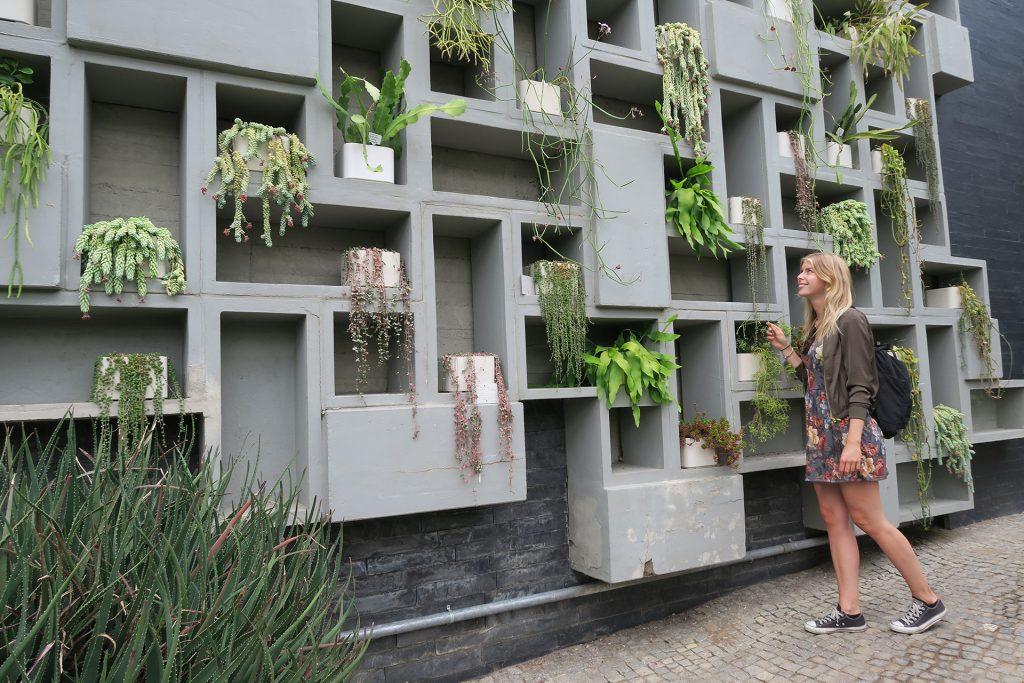 Planten und Blomen Thera Hamburg