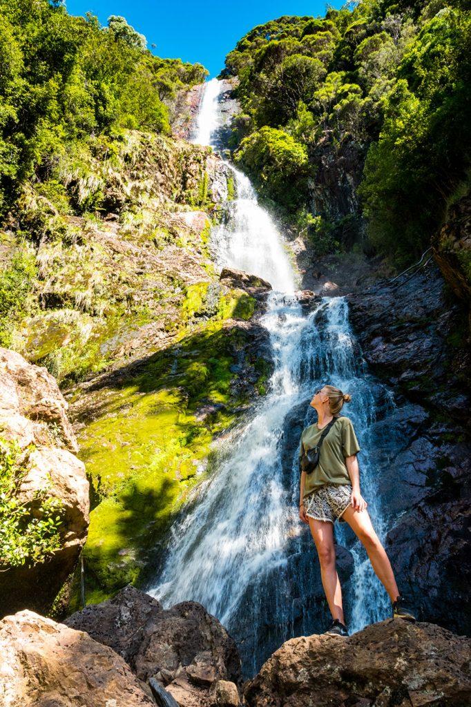 Water Waterval Tasmanië