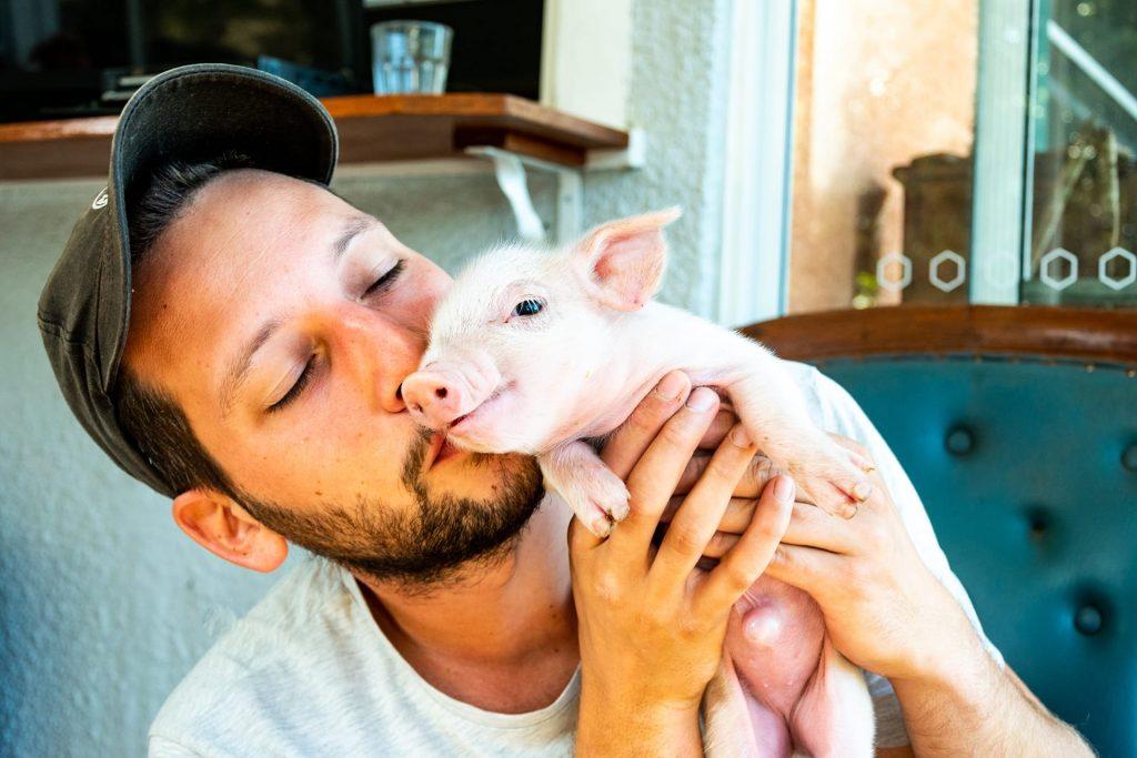 Vegan voor de dieren