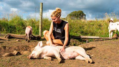 Vegetarier versus vegan